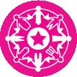 msi_designprocesser